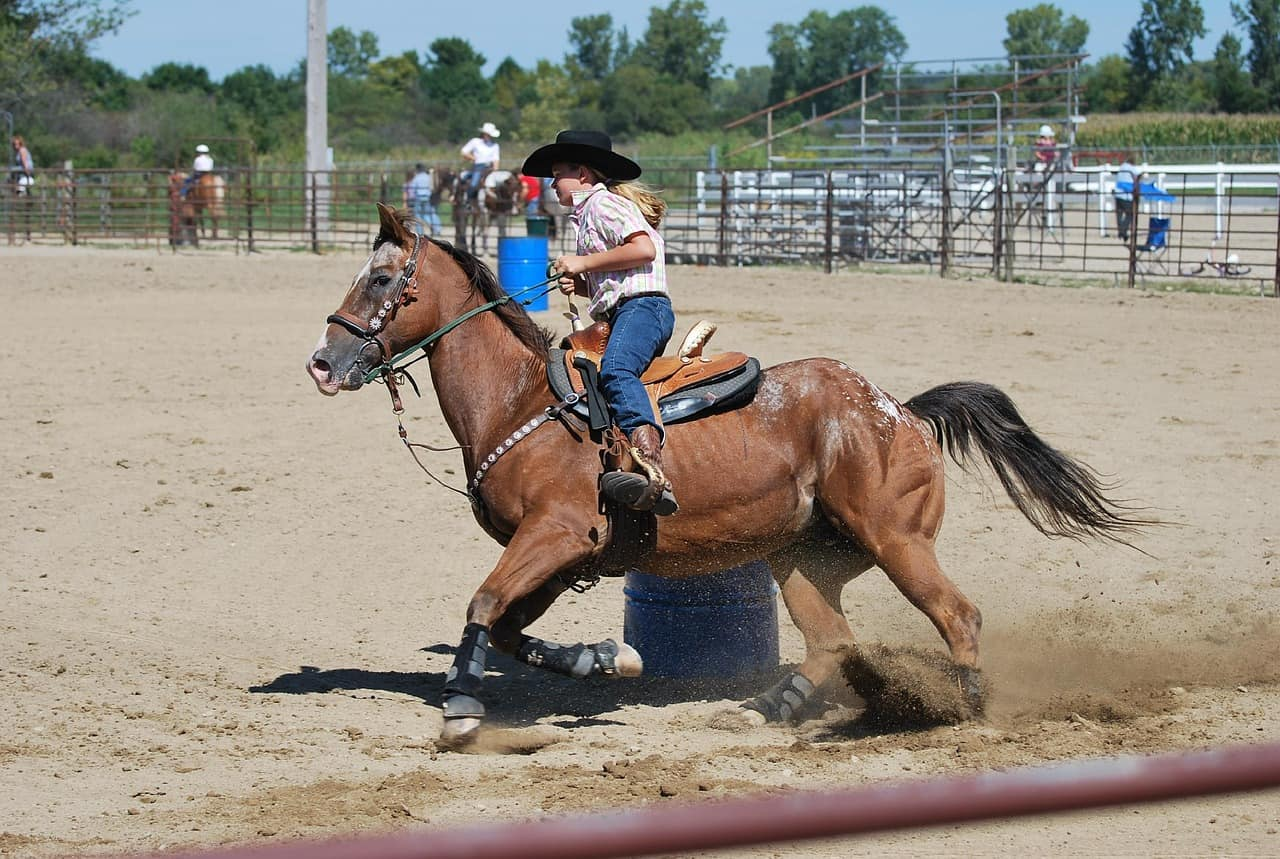 Barrel Race: 16 Common Questions Answered