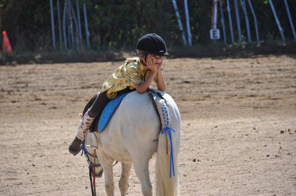 Horse-Walk-Backwards